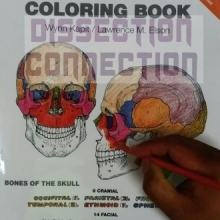 Kapit & Elson's Human Anatomy Colouring Book