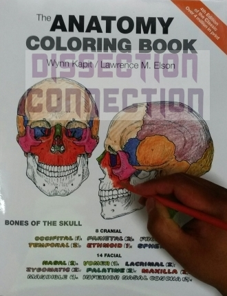 kapit elsons human anatomy colouring book