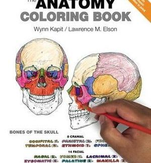 kapit and elsons the human anatomy colouring book 4th eition